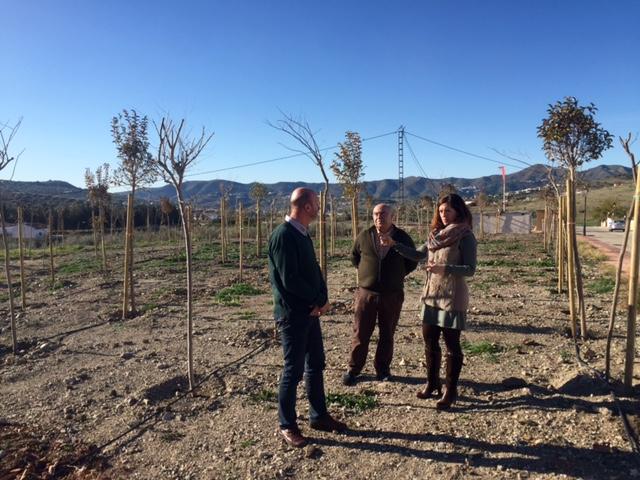 La Diputación restaura dos parcelas de Alcaucín con la plantación de 500 árboles