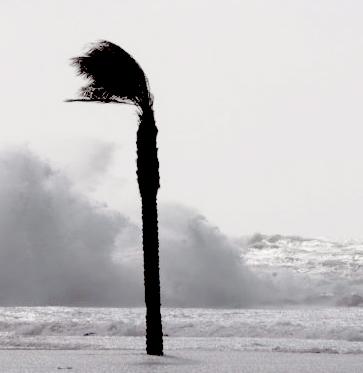 Remite el temporal