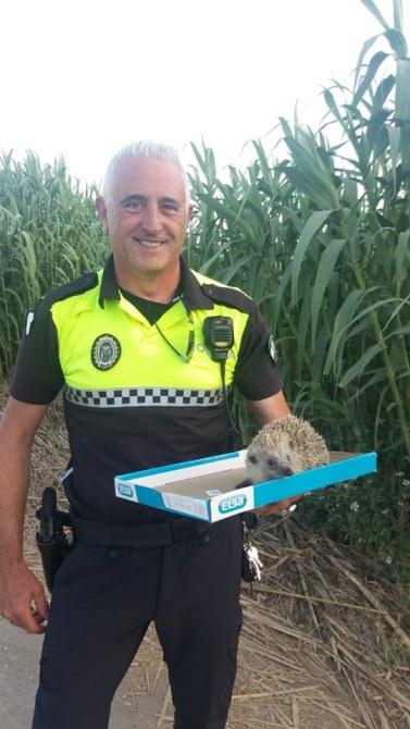 Foto: Policia Local Vélez-Málaga.