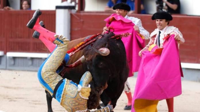 Brutal cornada a Román en Las Ventas
