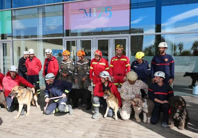 Bomberos y militares de cinco países participan en un curso sobre rescate de personas con unidades caninas