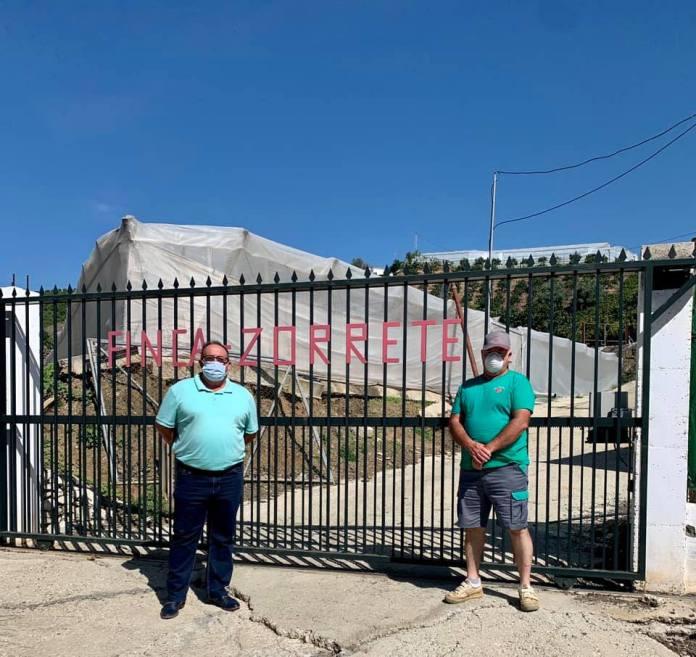 El alcalde de Iznate, Gregorio Campos (PSOE) visita las instalaciones de la Empresa agrícola Hermanos Alba en el inicio de la campaña de producción de 'semillas limpias'