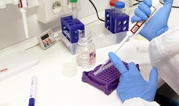 Málaga no registra nuevos contagios ni muertes por coronavirus