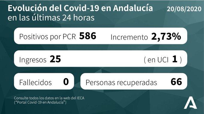 Andalucía suma 586 nuevos casos de covid-19 confirmados por PCR