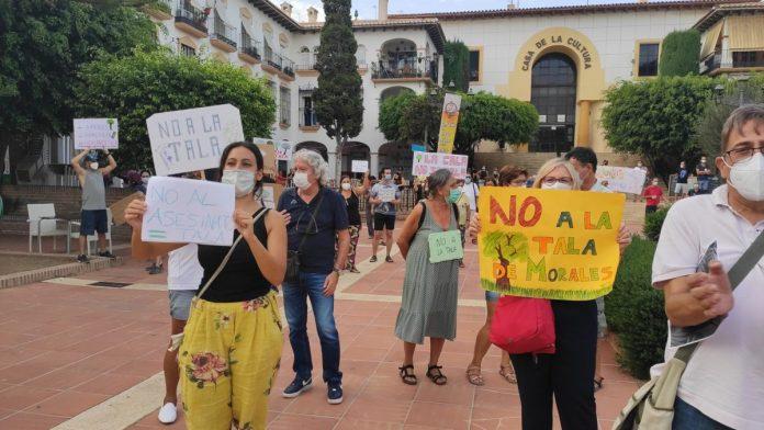 Reunión 'La Cala no se tala' y el Ayuntamiento de Rincón de la Victoria