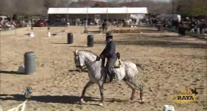 El jinete veleño Manuel Valverde Galán, primer premio en el Campeonato de Andalucía de Equitación de Trabajo