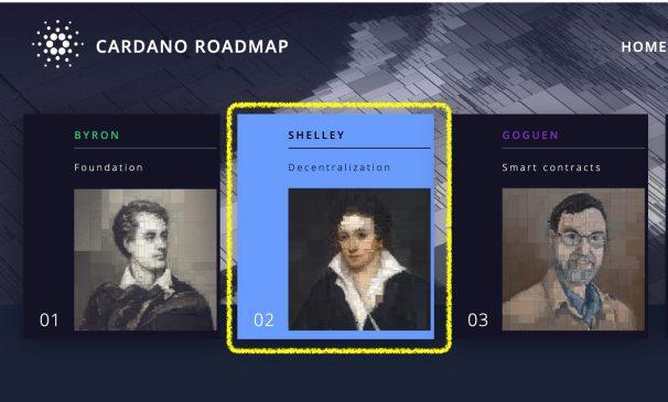 cardano Shelley