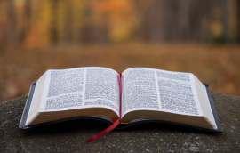 biblia bloque 666.666