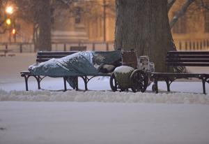 Washington paralizada por una espesa capa de nieve
