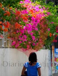 -galeria colores verano 1 copy