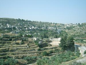 Paisaje de Cisjordania amenazado por muro israelí, Patrimonio Mundial en peligro