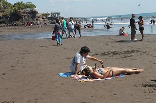 Medio Ambiente descarta toxicidad de microalgas marinas