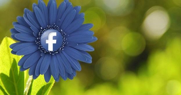 Conceptos básicos de privacidad en Facebook: tú decides