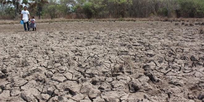 Pérdidas y Daños causado por Cambio Climático es tema Conflictivo : Thomas Hirsch