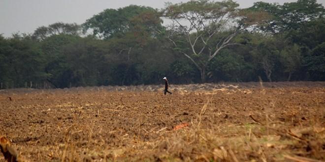 PECOSOL demanda atención al sector agropecuario afectado por sequías
