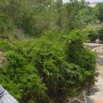 Ministra Lina Pohl observa cómo la melaza recorre el río Las Cañas en Apopa. Foto cortesía.