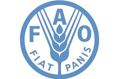 FAO realiza debate sobre la mujer rural y su papel ante el hambre