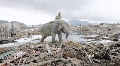 Las catástrofes naturales fueron más costosas pero menos mortales en 2016