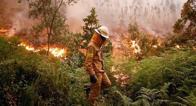 Los bomberos combaten sin descanso el fuego en Portugal, que dejó 62 muertos