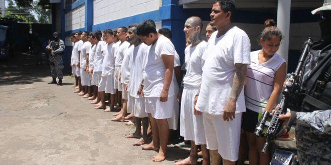 Operatividad a nivel nacional deja más de 50 capturas
