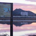 Las Salinas de Marchamalo, un humedal protegido totalmente abandonado por la Administración regional.