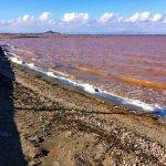 Las aguas del Mar Menor presentaban en otoño este aspecto rojizo.