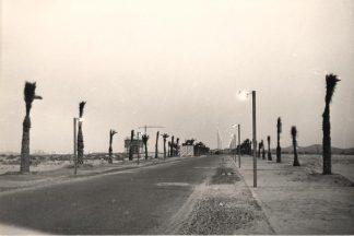 carretera de la manga (9)
