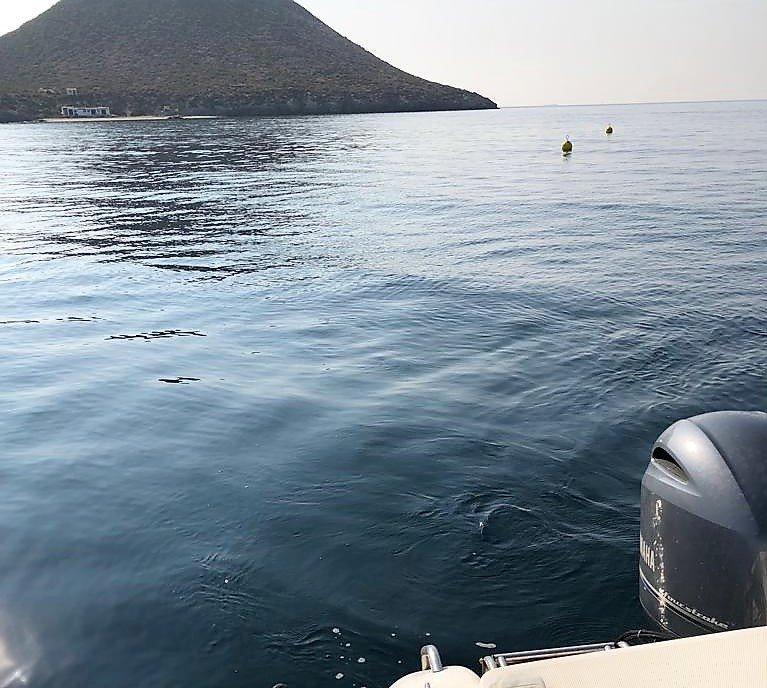 Hasta mil quinientas embarcaciones de recreo podrán atracar alrededor de Isla Grosa y Farallón