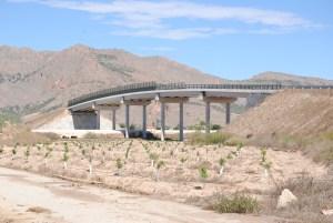 Un puente peligroso: demasiado estrecho y sin alumbrado