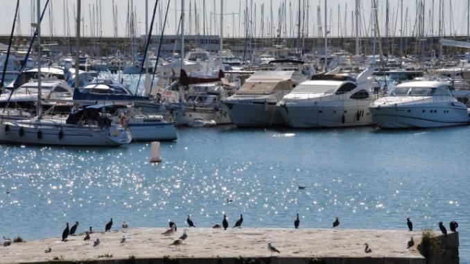 Puerto 1