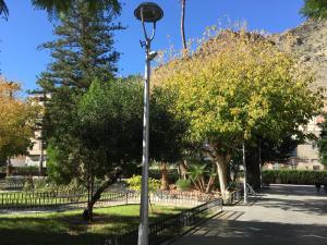 El Ayuntamiento actualiza el registro de asociaciones de Callosa