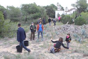 El plan de restauración de las dunas de Guardamar prevé la plantación de 95.473 ejemplares de 34 especies