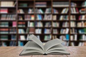 El Ayuntamiento llevará el salón del libro a los colegios con motivo de la pandemia