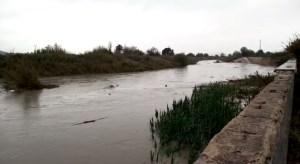 El río Segura a su paso por Almoradí deja momentos inquietantes tras las intensas lluvias