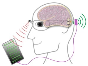 La Unión Europea financia un proyecto para restaurar la visión a través de estimulación eléctrica e inteligencia artificial, en el que participa la UMH