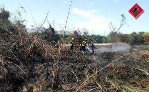 Los bomberos sofocan un incendio de matorral y pino en La Campaneta