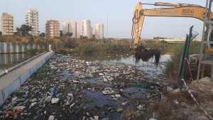 La CHS interviene para retirar toneladas de sólidos flotantes en el cauce antiguo del Segura en Guardamar