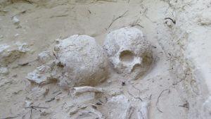 Hallan un complejo industrial de periodo Ibérico en el yacimiento de Cabezo del Molino, en Rojales