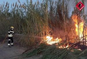 Los bomberos sofocan un incendio de cañas junto a la autovía en Orihuela