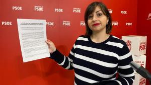 """EL PSOE critica que Transparencia haya gastado la subvención de Conselleria """"solo para publicidad"""""""