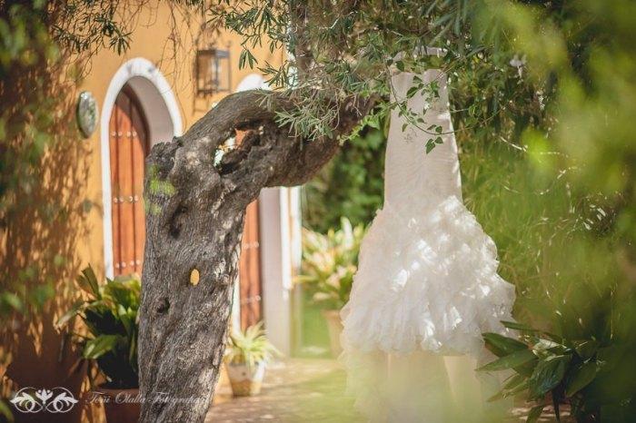 vestido de novia en arbol