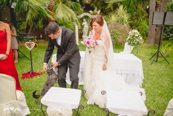 Mascotas en nuestra boda