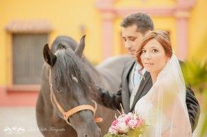Boda con novia y caballo