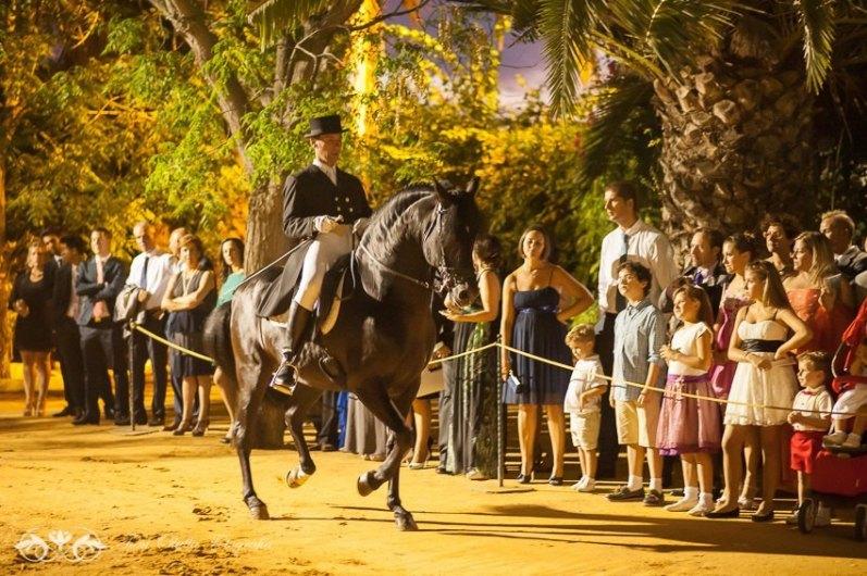 baile caballo boda vista lateral
