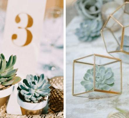 bodas con suculentas - Blog