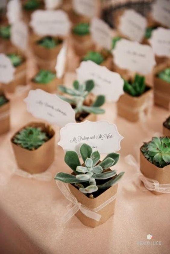 suculentas para regalar en boda
