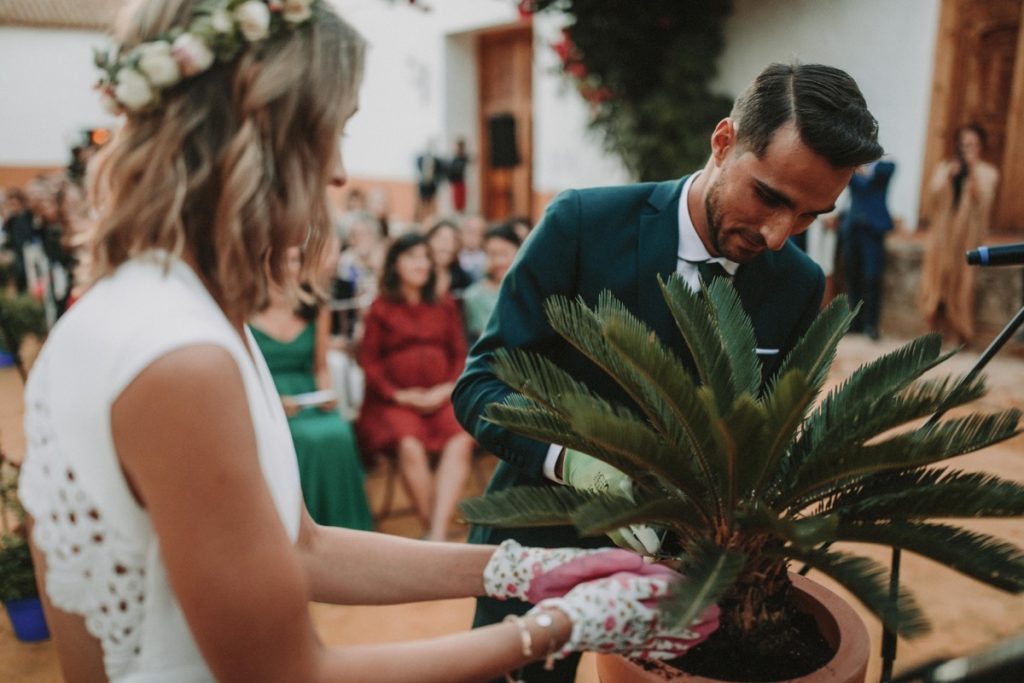 ritual de plantar un arbol - Rituales Simbólicos para una Boda Civil