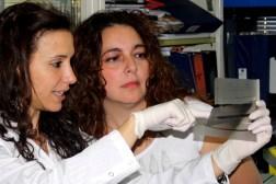 Juliana Speroni, primera autora del estudio, y Vanesa Gottifredi, jefa del laboratorio de Ciclo Celular y Estabilidad Genómica de la Fundación Instituto Leloir.   Créditos: Agencia CyTA-Instituto Leloir