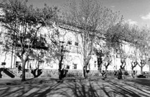 escuela11