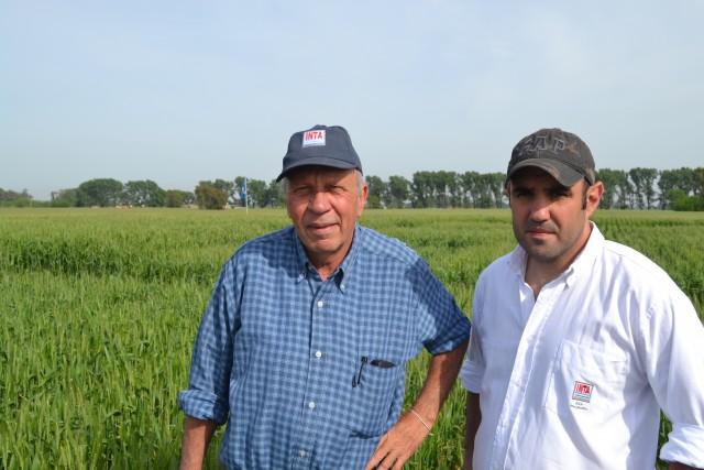 Luis Ventimiglia y Lisandro Torrens tendran a su cargo la disertacion sobre trigo y cebada en la Rural